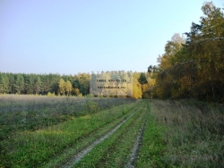 Кустодиевка